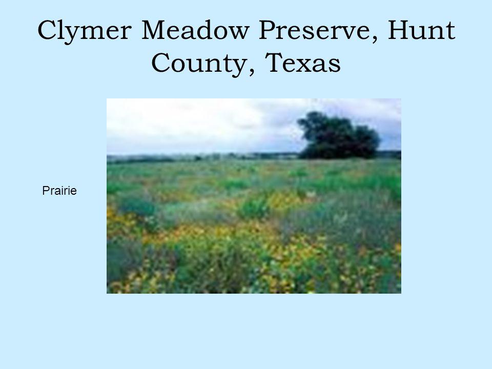 Clymer Meadow Preserve, Hunt County, Texas Prairie