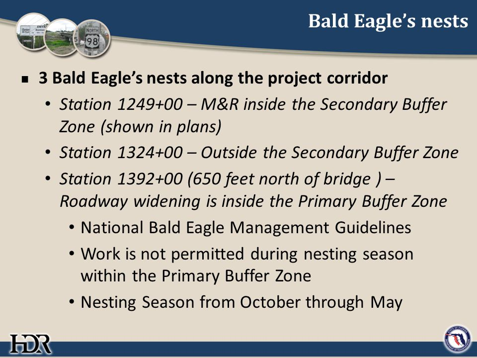 Bald Eagle's nests 3 Bald Eagle's nests along the project corridor Station 1249+00 – M&R inside the Secondary Buffer Zone (shown in plans) Station 1324+00 – Outside the Secondary Buffer Zone Station 1392+00 (650 feet north of bridge ) – Roadway widening is inside the Primary Buffer Zone National Bald Eagle Management Guidelines Work is not permitted during nesting season within the Primary Buffer Zone Nesting Season from October through May