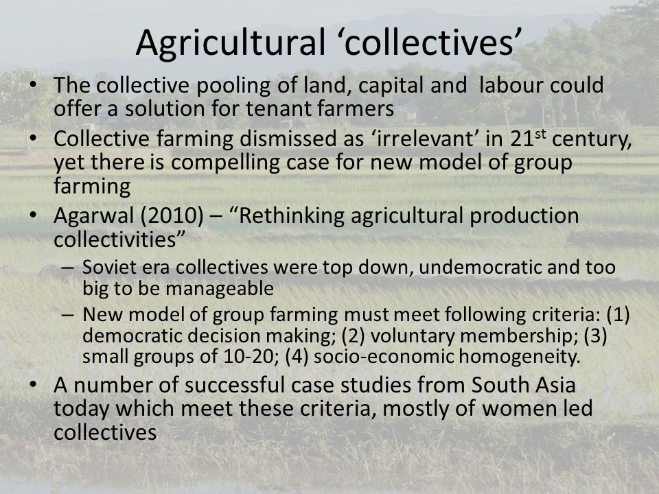 Agricultural 'collectives' The collective pooling of land, capital and labour could offer a solution for tenant farmers Collective farming dismissed as 'irrelevant' in 21 st century, yet there is compelling case for new model of group farming Agarwal (2010) – Rethinking agricultural production collectivities – Soviet era collectives were top down, undemocratic and too big to be manageable – New model of group farming must meet following criteria: (1) democratic decision making; (2) voluntary membership; (3) small groups of 10-20; (4) socio-economic homogeneity.