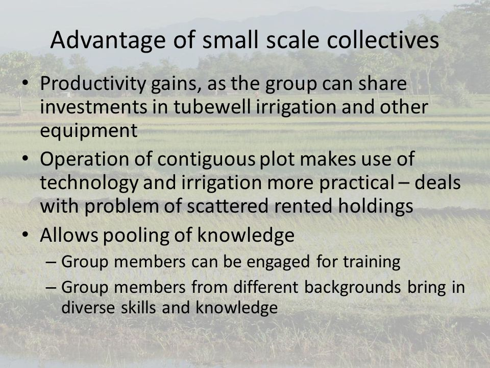 Advantage of small scale collectives Productivity gains, as the group can share investments in tubewell irrigation and other equipment Operation of contiguous plot makes use of technology and irrigation more practical – deals with problem of scattered rented holdings Allows pooling of knowledge – Group members can be engaged for training – Group members from different backgrounds bring in diverse skills and knowledge