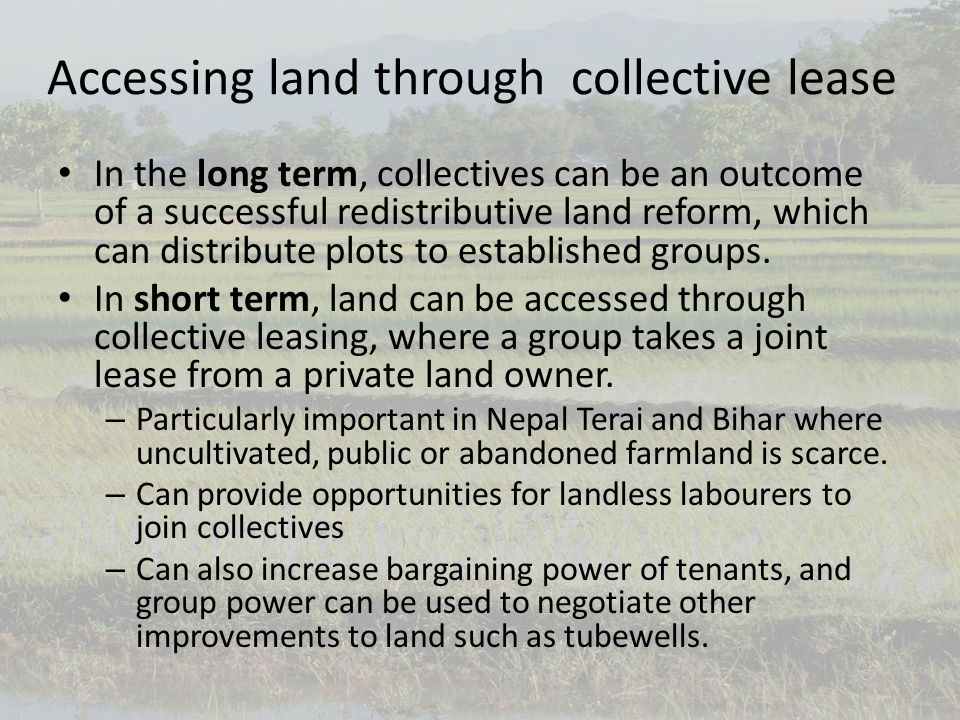 Accessing land through collective lease In the long term, collectives can be an outcome of a successful redistributive land reform, which can distribute plots to established groups.