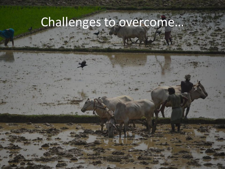 Challenges to overcome…