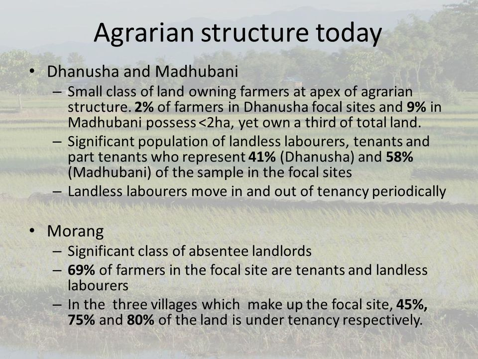 Agrarian structure today Dhanusha and Madhubani – Small class of land owning farmers at apex of agrarian structure.