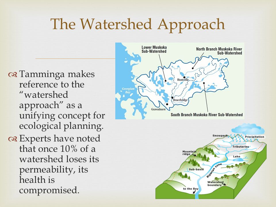 "  Tamminga makes reference to the ""watershed approach"" as a unifying concept for ecological planning.  Experts have noted that once 10% of a waters"