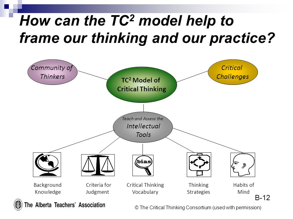 How can the TC 2 model help to frame our thinking and our practice.