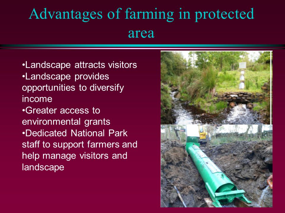 Disadvantages of farming in protected area Physical disadvantage of land Greater control on development to protect the landscape More visitors – how to capture the value of those visitors.