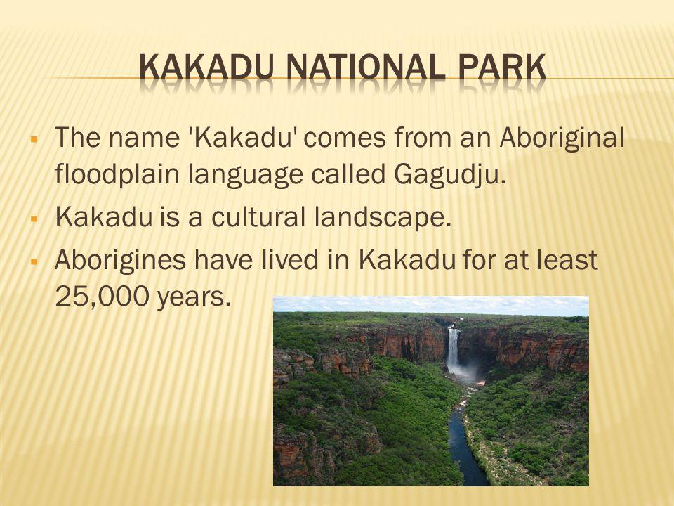  The name Kakadu comes from an Aboriginal floodplain language called Gagudju.