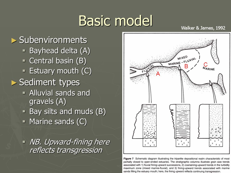Basic model ► Subenvironments  Bayhead delta (A)  Central basin (B)  Estuary mouth (C) ► Sediment types  Alluvial sands and gravels (A)  Bay silts and muds (B)  Marine sands (C)  NB.