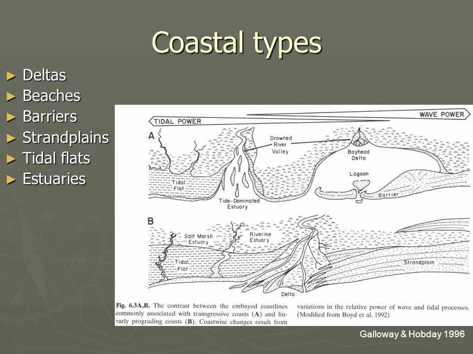 Coastal types ► Deltas ► Beaches ► Barriers ► Strandplains ► Tidal flats ► Estuaries Galloway & Hobday 1996