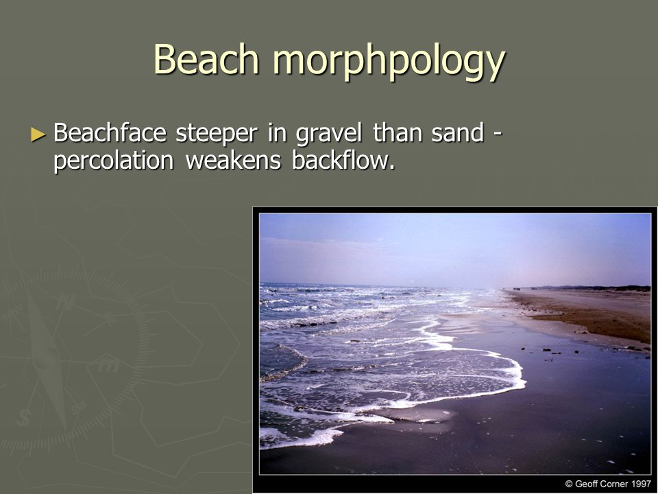 Beach morphpology ► Beachface steeper in gravel than sand - percolation weakens backflow.