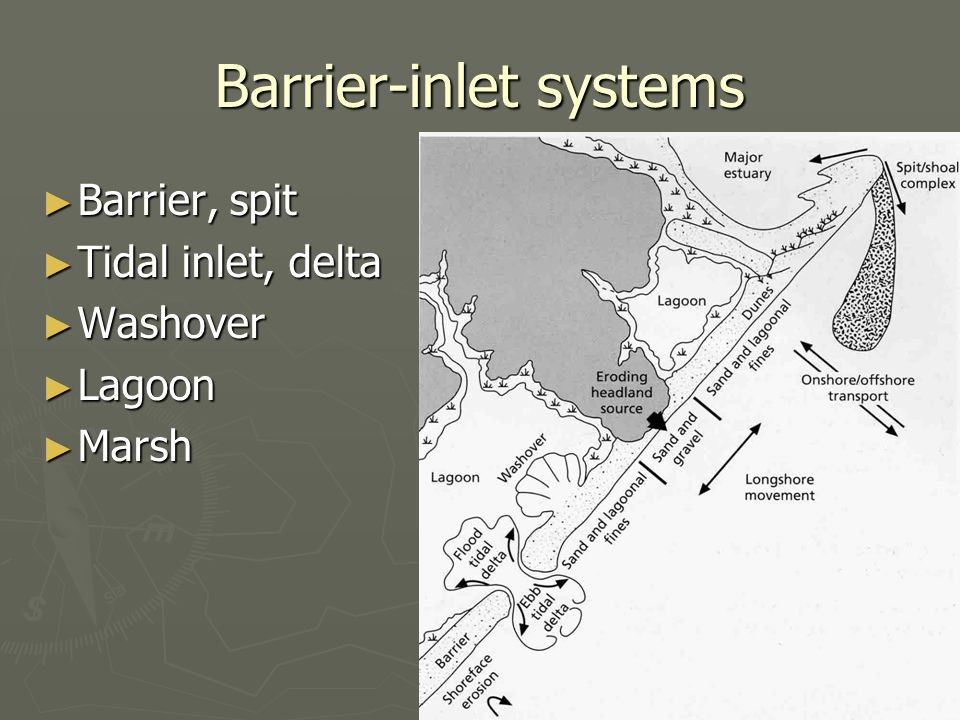 Barrier-inlet systems ► Barrier, spit ► Tidal inlet, delta ► Washover ► Lagoon ► Marsh