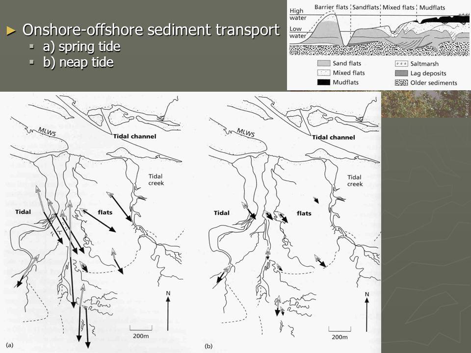 ► Onshore-offshore sediment transport  a) spring tide  b) neap tide