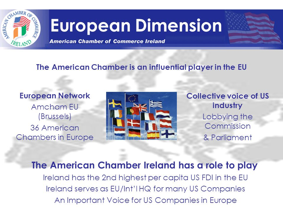 European Dimension The American Chamber is an influential player in the EU European Network Amcham EU (Brussels) 36 American Chambers in Europe Collective voice of US industry Lobbying the Commission & Parliament The American Chamber Ireland has a role to play Ireland has the 2nd highest per capita US FDI in the EU Ireland serves as EU/Int'l HQ for many US Companies An Important Voice for US Companies in Europe