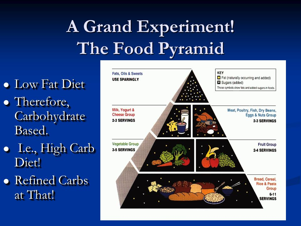 A Grand Experiment. The Food Pyramid l Low Fat Diet l Therefore, Carbohydrate Based.