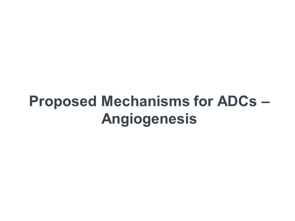 Proposed Mechanisms for ADCs – Angiogenesis