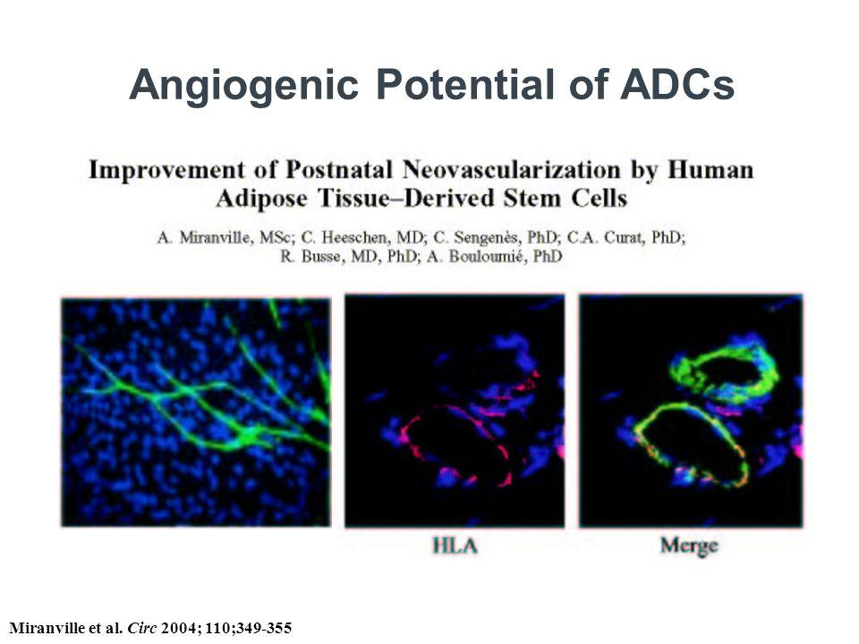 Angiogenic Potential of ADCs Miranville et al. Circ 2004; 110;349-355