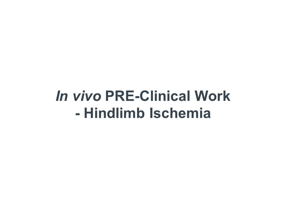 In vivo PRE-Clinical Work - Hindlimb Ischemia