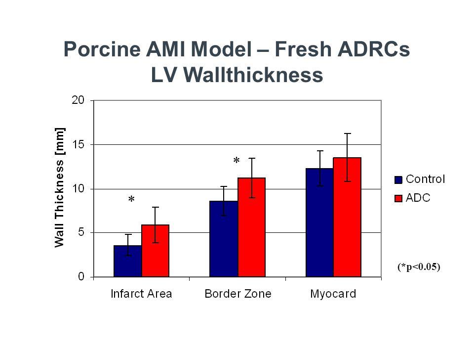 Porcine AMI Model – Fresh ADRCs LV Wallthickness (*p<0.05) * *