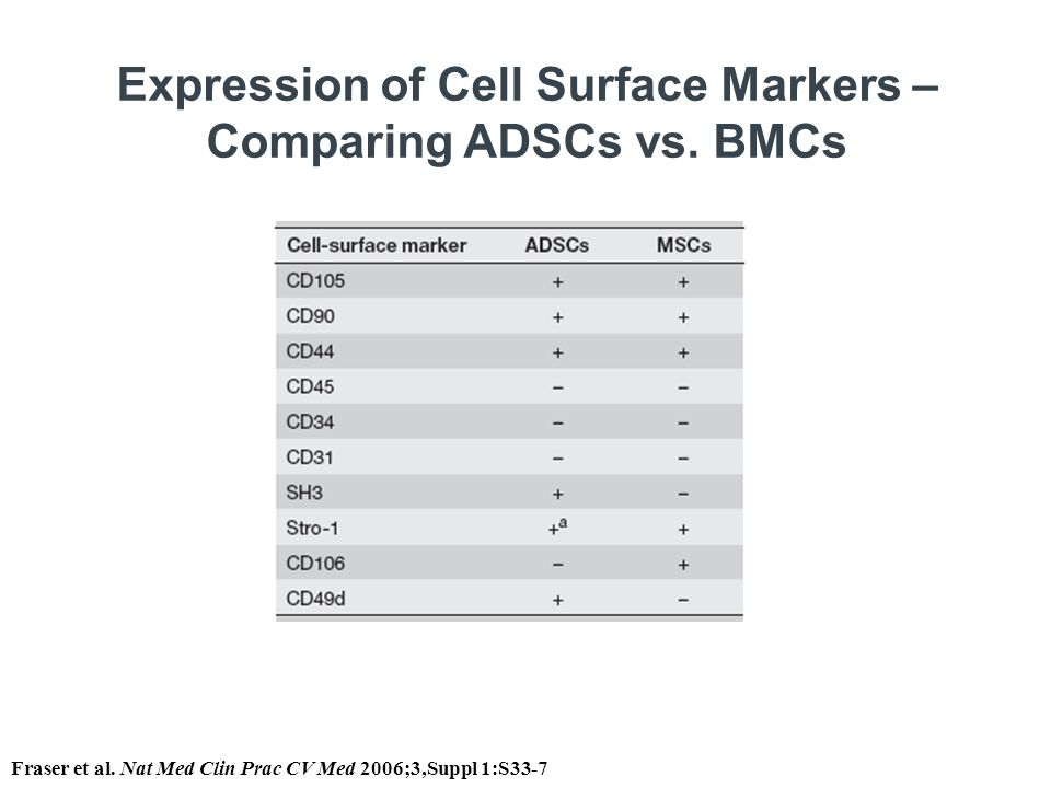 Expression of Cell Surface Markers – Comparing ADSCs vs. BMCs Fraser et al. Nat Med Clin Prac CV Med 2006;3,Suppl 1:S33-7