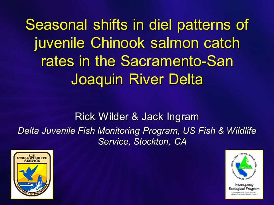 Seasonal shifts in diel patterns of juvenile Chinook salmon catch rates in the Sacramento-San Joaquin River Delta Rick Wilder & Jack Ingram Delta Juvenile Fish Monitoring Program, US Fish & Wildlife Service, Stockton, CA