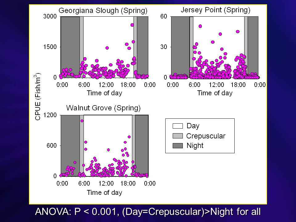 ANOVA: P Night for all Day Crepuscular Night