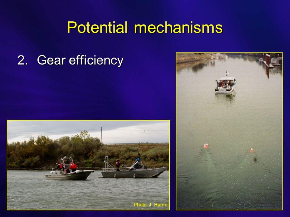 Potential mechanisms 2.Gear efficiency Photo: J. Hanni