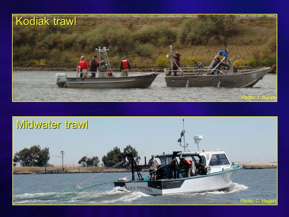 Photo: C. Hagen Kodiak trawl Midwater trawl Photo: J. Hanni