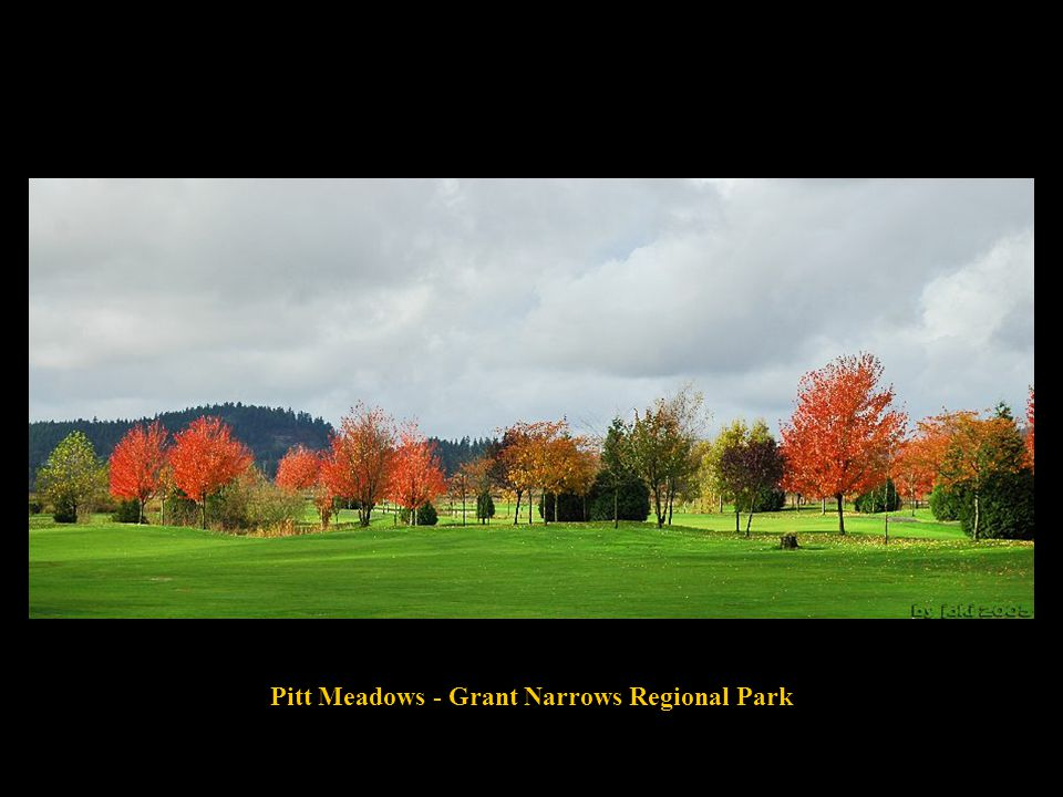 Pitt Meadows - Grant Narrows Regional Park