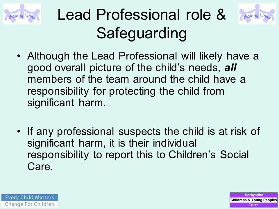Lead Professional role & Safeguarding Although the Lead Professional will likely have a good overall picture of the child's needs, all members of the