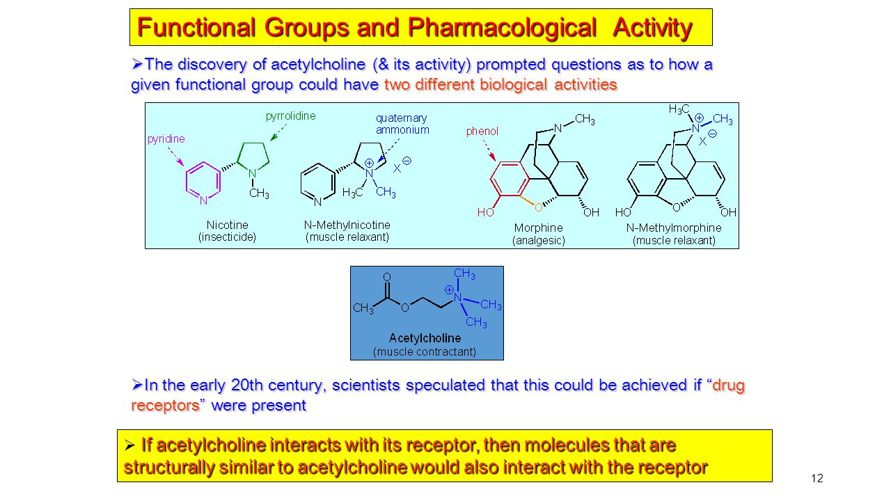 12  The discovery of acetylcholine (& its activity) prompted questions as to how a given functional group could have two different biological activit