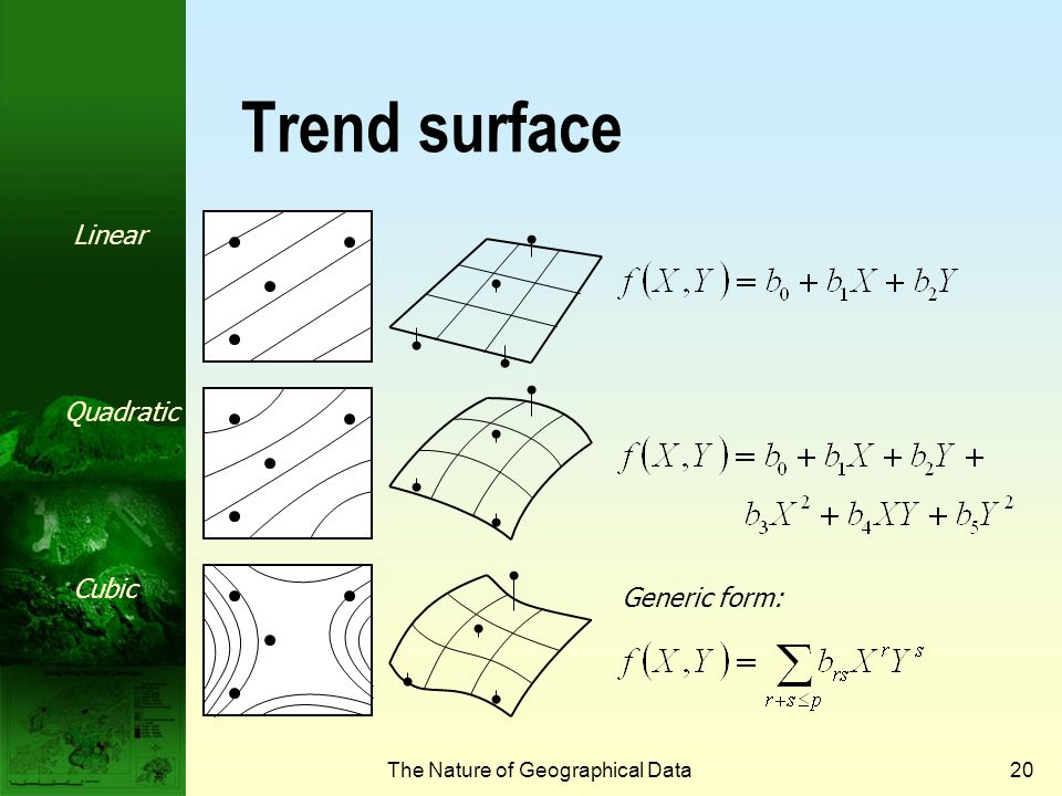 The Nature of Geographical Data19 Interpolation processes  Global surface fitting  Trend surface  Local surface fitting  Distance reverse weighting functions  Spline and kriging