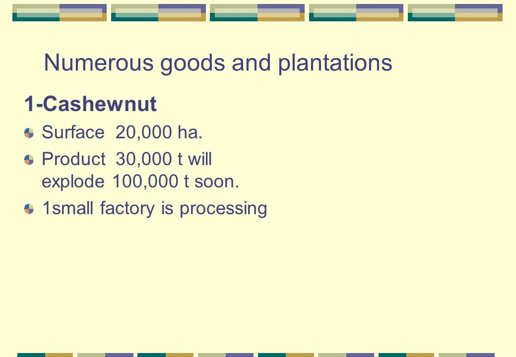 Numerous goods and plantations 1-Cashewnut Surface 20,000 ha.