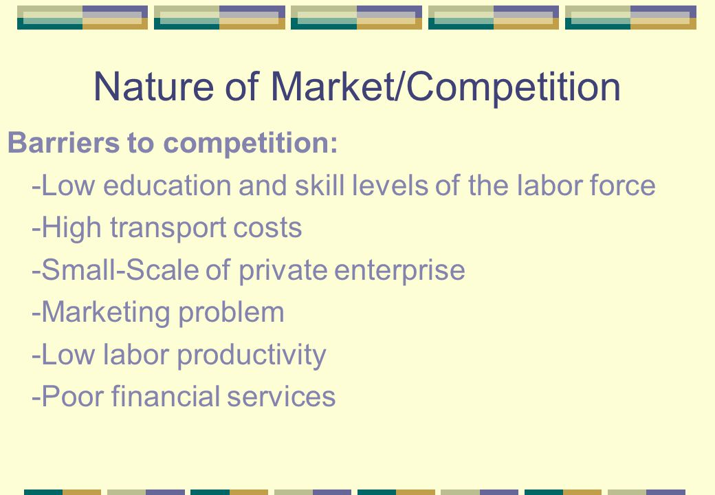 Nature of Market/Competition Barriers to competition: -Low education and skill levels of the labor force -High transport costs -Small-Scale of private enterprise -Marketing problem -Low labor productivity -Poor financial services