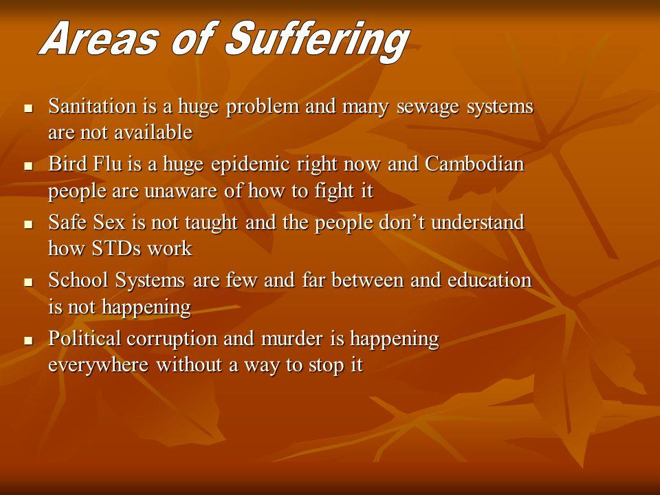 Sanitation is a huge problem and many sewage systems are not available Sanitation is a huge problem and many sewage systems are not available Bird Flu