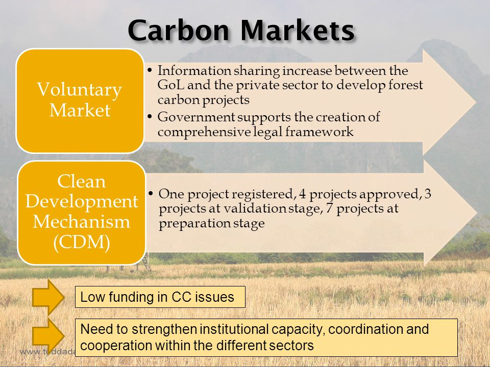 Carbon Markets Voluntary Market One project registered, 4 projects approved, 3 projects at validation stage, 7 projects at preparation stage Clean Development Mechanism (CDM) Information sharing increase between the GoL and the private sector to develop forest carbon projects Government supports the creation of comprehensive legal framework Low funding in CC issues Need to strengthen institutional capacity, coordination and cooperation within the different sectors