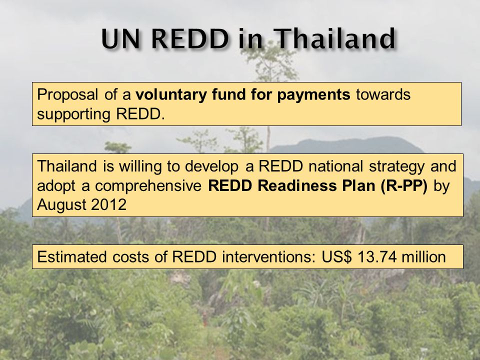 Proposal of a voluntary fund for payments towards supporting REDD.