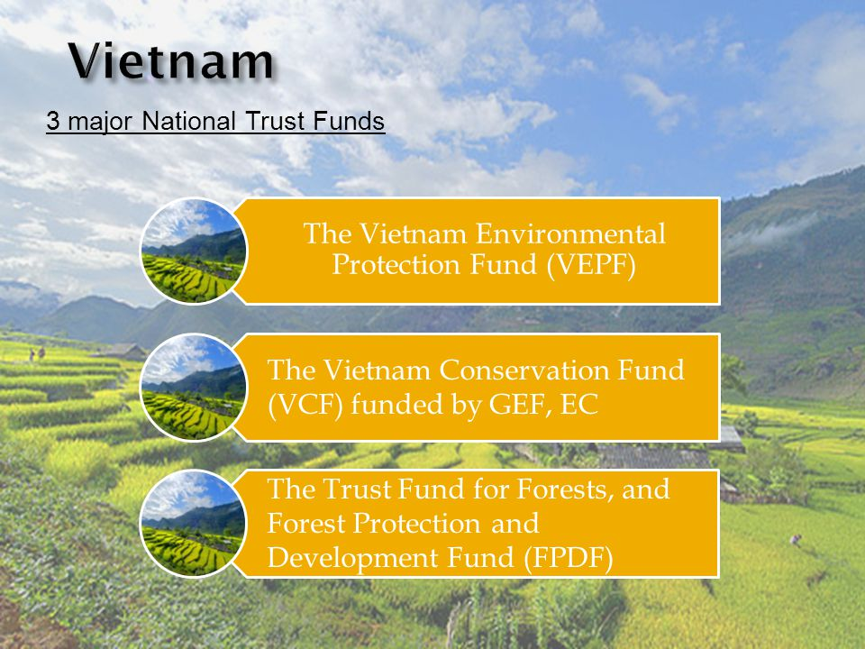 3 major National Trust Funds The Vietnam Environmental Protection Fund (VEPF) The Vietnam Conservation Fund (VCF) funded by GEF, EC The Trust Fund for Forests, and Forest Protection and Development Fund (FPDF)