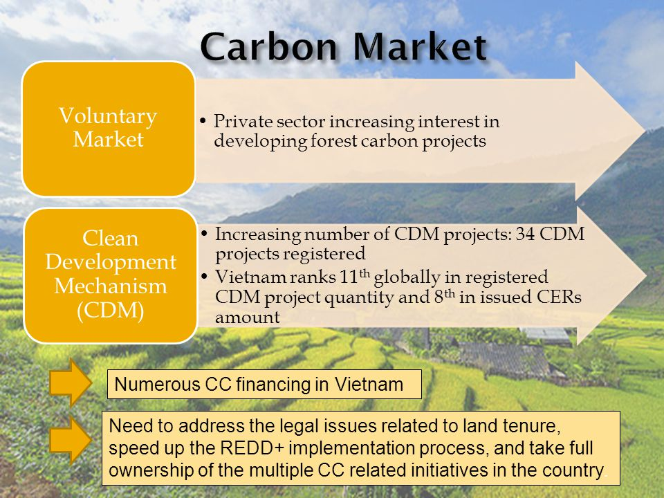 Voluntary Market Increasing number of CDM projects: 34 CDM projects registered Vietnam ranks 11 th globally in registered CDM project quantity and 8 th in issued CERs amount Clean Development Mechanism (CDM) Private sector increasing interest in developing forest carbon projects Numerous CC financing in Vietnam Need to address the legal issues related to land tenure, speed up the REDD+ implementation process, and take full ownership of the multiple CC related initiatives in the country.