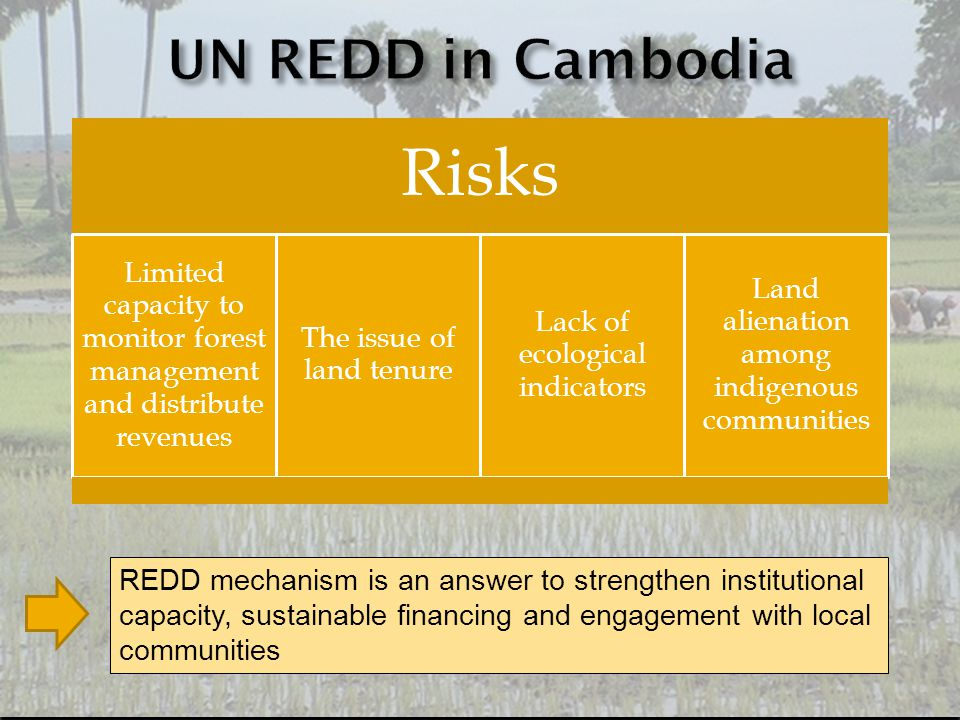 Risks Limited capacity to monitor forest management and distribute revenues The issue of land tenure Lack of ecological indicators Land alienation among indigenous communities REDD mechanism is an answer to strengthen institutional capacity, sustainable financing and engagement with local communities