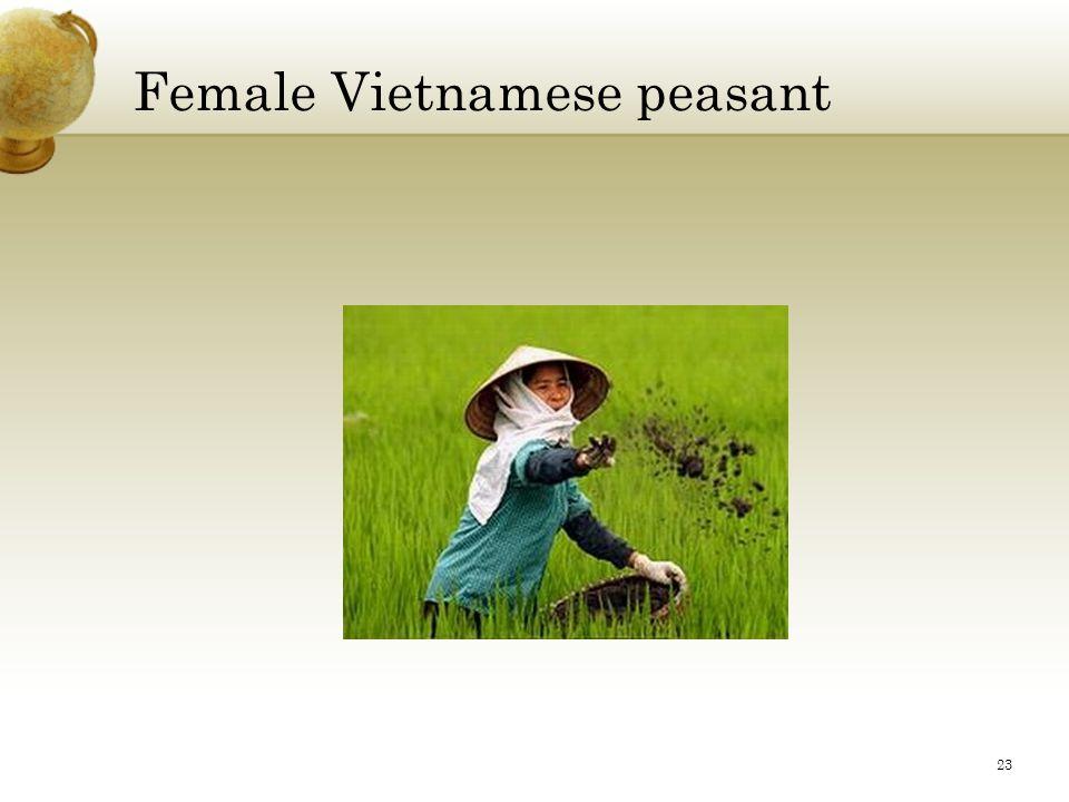 Female Vietnamese peasant 23