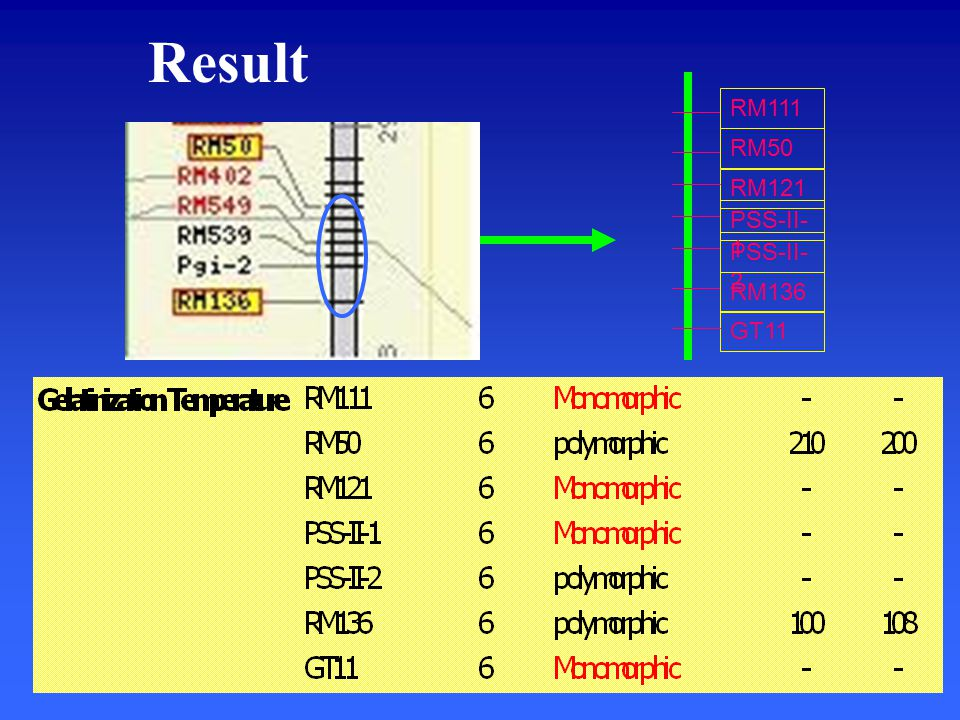Result RM50 RM121 PSS-II- 1 PSS-II- 2 RM136 RM111 GT11