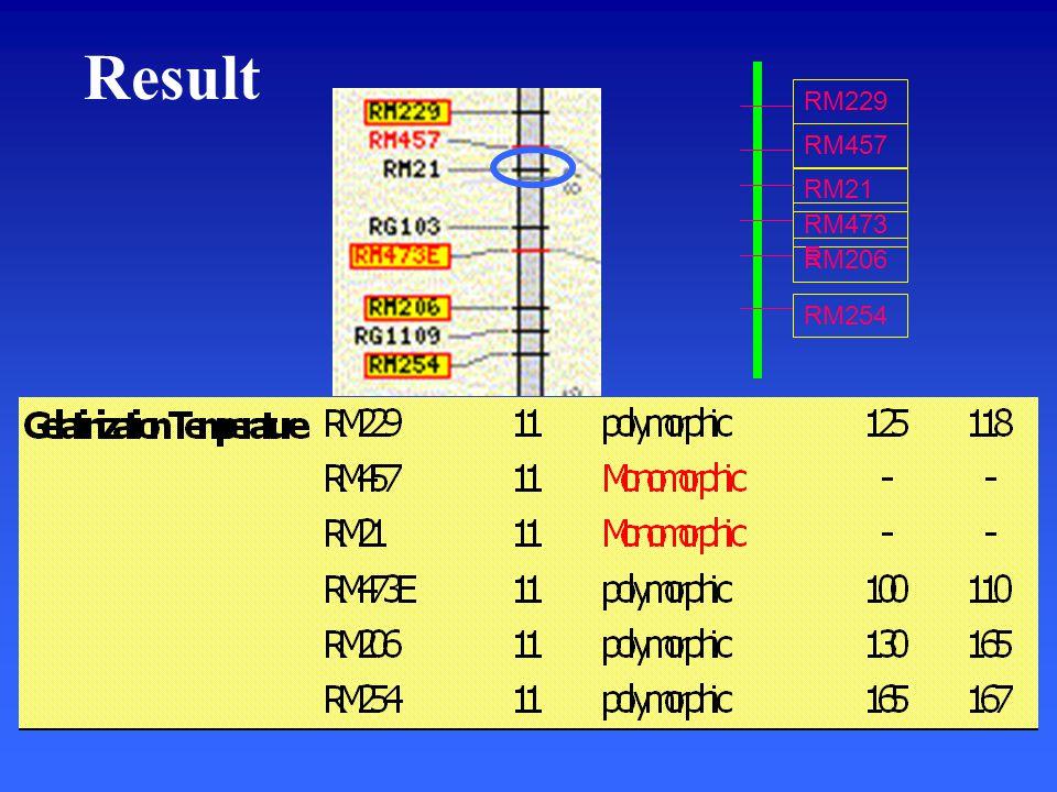 Result RM457 RM21 RM473 E RM206 RM254 RM229