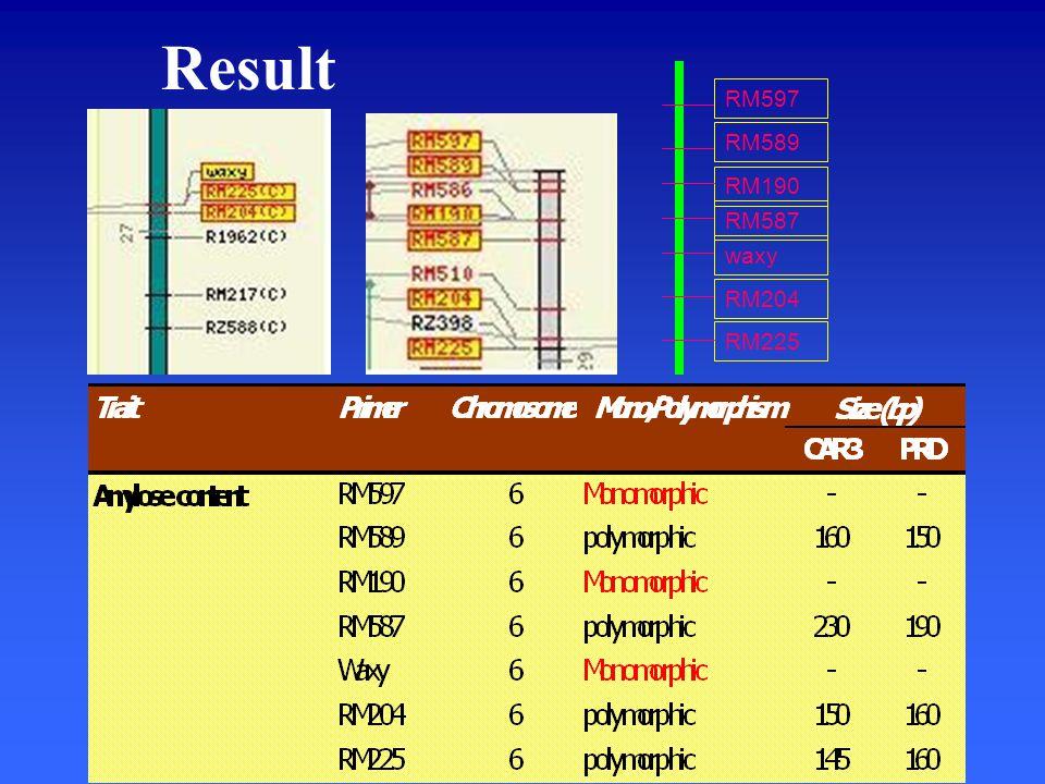 Result RM589 RM190 RM587 waxy RM204 RM597 RM225