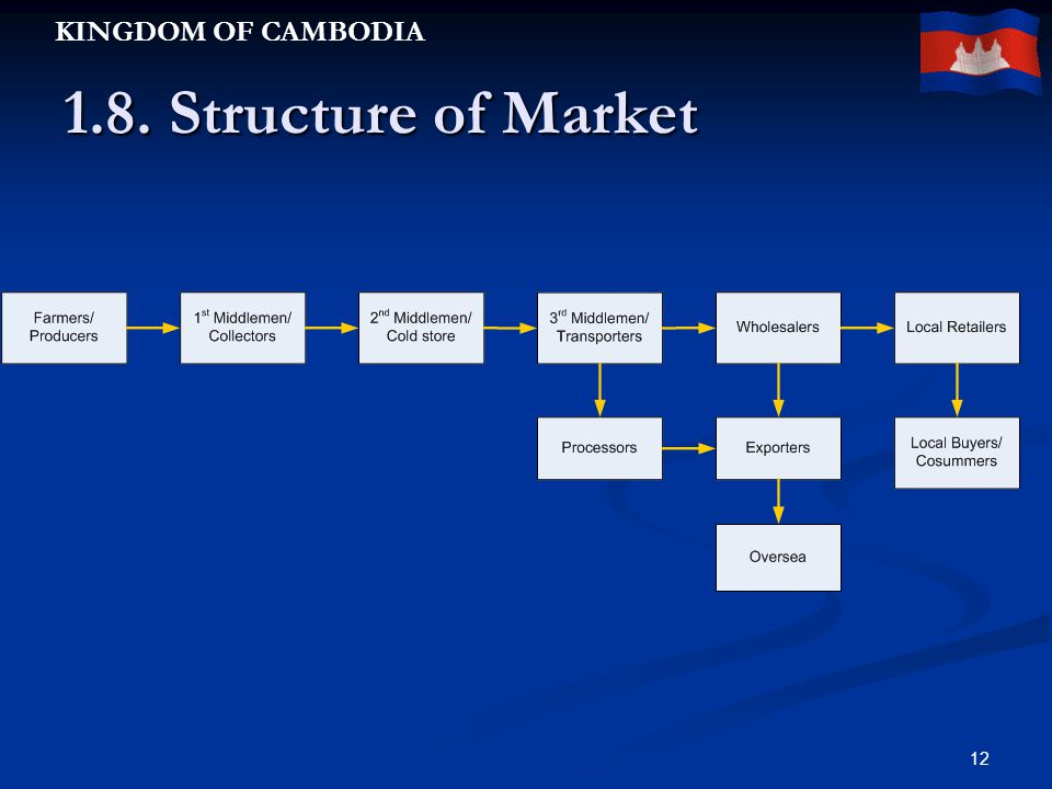 KINGDOM OF CAMBODIA 12 1.8. Structure of Market