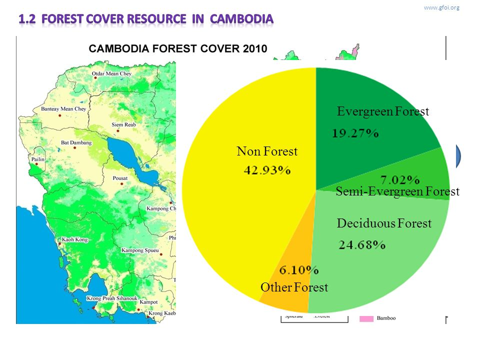www.gfoi.org Cambodia defines forest as follows (FAO):10% crown cover, a minimum area:0.5ha, and a minimum tree height: 5m LANDSAT TM Non Forest Everg