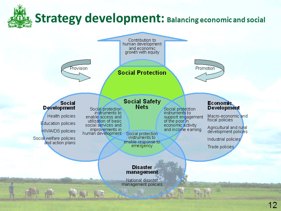 12 Strategy development: Balancing economic and social