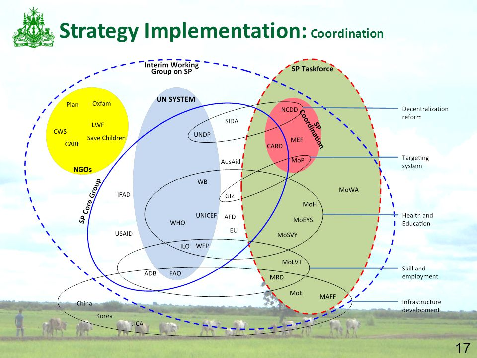 17 Strategy Implementation: Coordination
