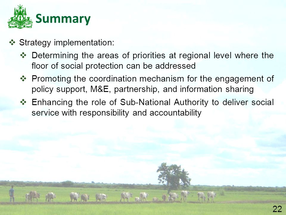 22 Summary  Strategy implementation:  Determining the areas of priorities at regional level where the floor of social protection can be addressed 