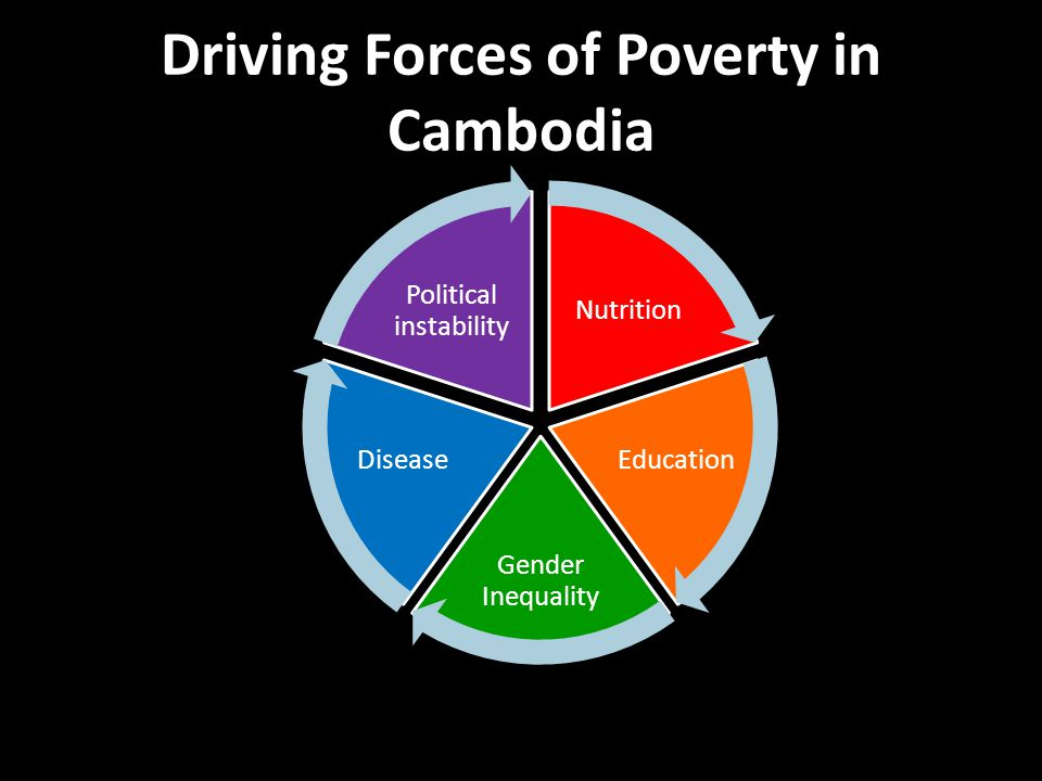 Driving Forces of Poverty in Cambodia Nutrition Education Gender Inequality Disease Political instability