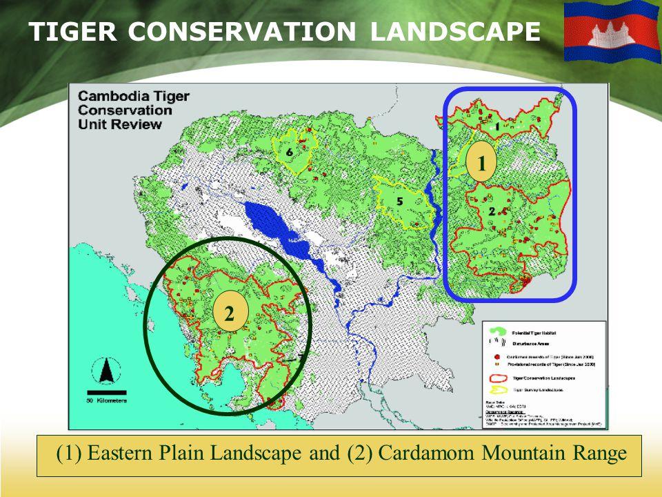 TIGER CONSERVATION LANDSCAPE (1) Eastern Plain Landscape and (2) Cardamom Mountain Range 2 1